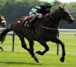 horseracing-250x250