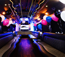 partybus-250x250