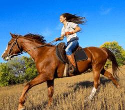 horseriding-250x250
