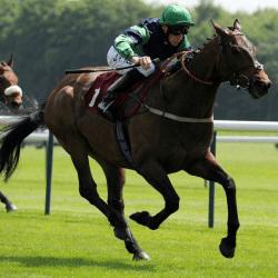 horserissing